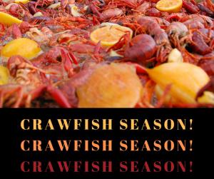 Shipwreck Grill 2019 Crawfish Season